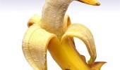 banana duck animal funny pic picture lol