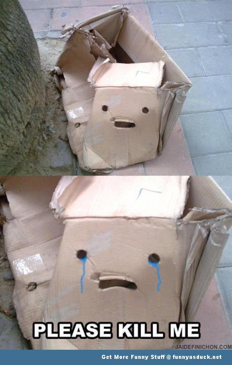 kill me box sad funny pic picture lol