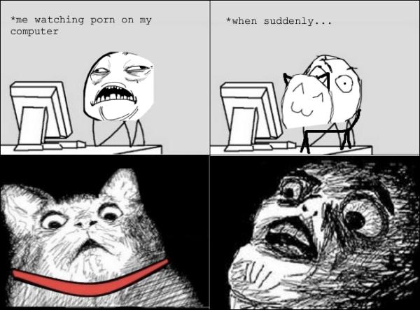 cat porn rage comic funny pics pictures pic picture image photo images photos lol meme memes