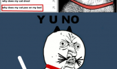 shocked cat rage comic funny pic picture lol meme