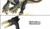 animal chicken dinosaur evolution stop funny pics pictures pic picture image photo images photos lol