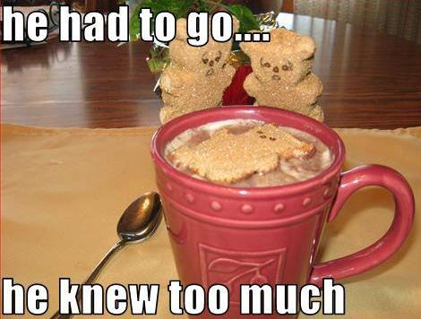 gingerbread teddy bear sad funny pic picture lol