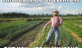 scarecrow meme pun funny pic pictures lol