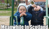 drinking babies scotland meme funny pic pictures lol