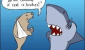 shark seal animal comic funny pics pictures pic picture image photo images photos lol