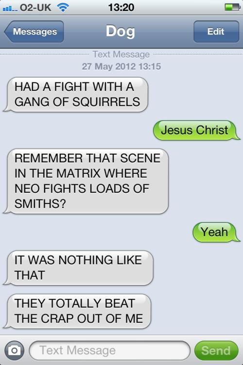 texts from dog squirrel iPhone Apple funny pic picture lol