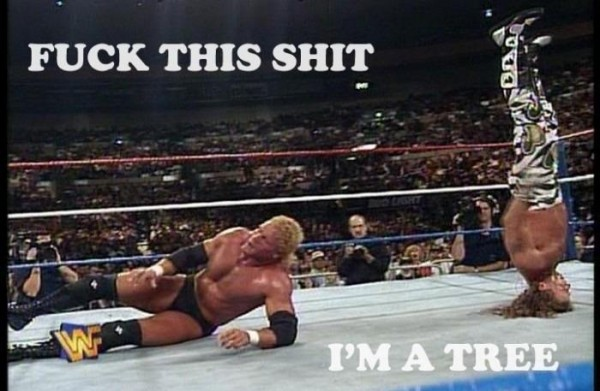 funny pic picture lol wwe meme