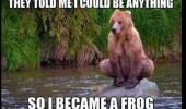 bear animal frog fishing funny meme pics pictures pic picture image photo images photos lol