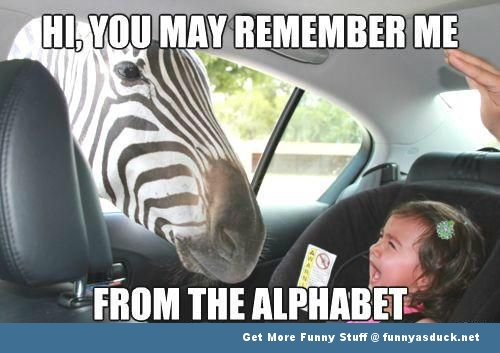 http://funnyasduck.net/wp-content/uploads/2012/09/funny-zebra-in-car-kid-pic.jpg