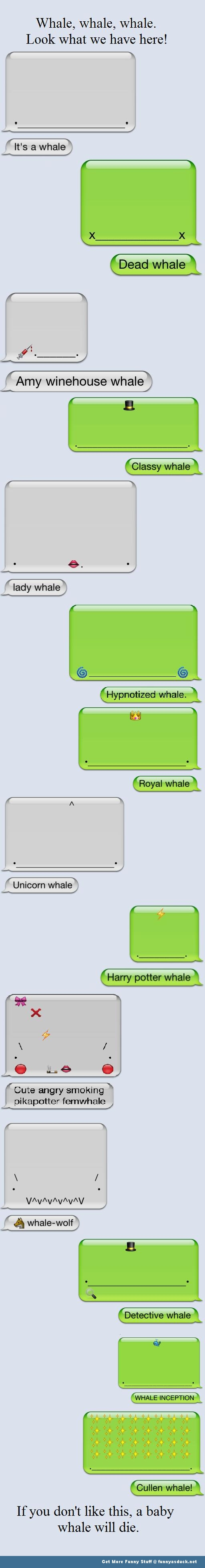 whales animal iPhone Apple funny pic picture lol