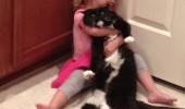 adopted cat cuddle kid girl lolcat animal funny pics pictures pic picture image photo images photos lol