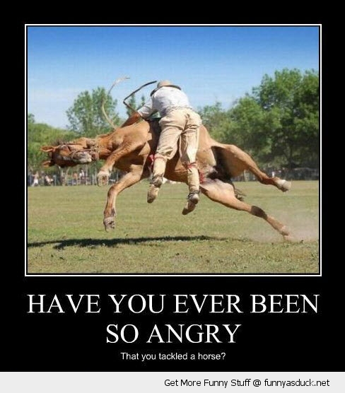 angry man tackle horse animal funny pics pictures pic picture image photo images photos lol