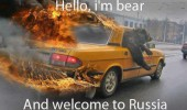 hello bear animal welcome to russia car fire funny pics pictures pic picture image photo images photos lol