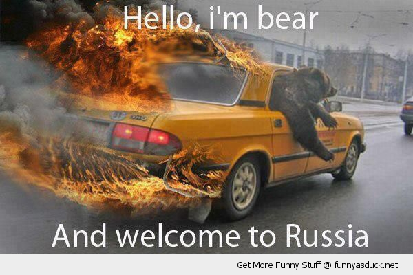 O Bear Animal Wel E To Russia Car Fire Funny Pics Pictures Pic Picture Image P O Images