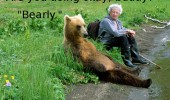 bearly ok buddy bear animal man guy funny pics pictures pic picture image photo images photos lol