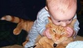 zombie baby brains cat biting head animal funny pics pictures pic picture image photo images photos lol