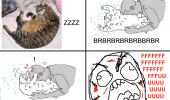 rage comic cat scratch kitty meme funny pics pictures pic picture image photo images photos lol