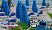 cookie monster mom dad beach funny pics pictures pic picture image photo images photos lol