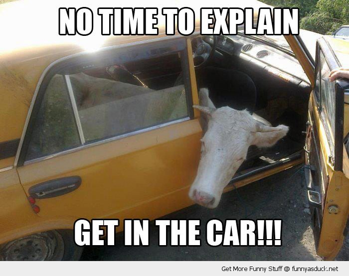 Get In The Car