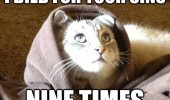 jesus cat lolcat sins died nine times funny pics pictures pic picture image photo images photos lol