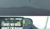 dog helicopter flying what I'm doing funny pics pictures pic picture image photo images photos lol