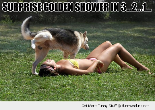 golden shower dog animal girl sun bathing funny pics pictures pic picture image photo images photos lol