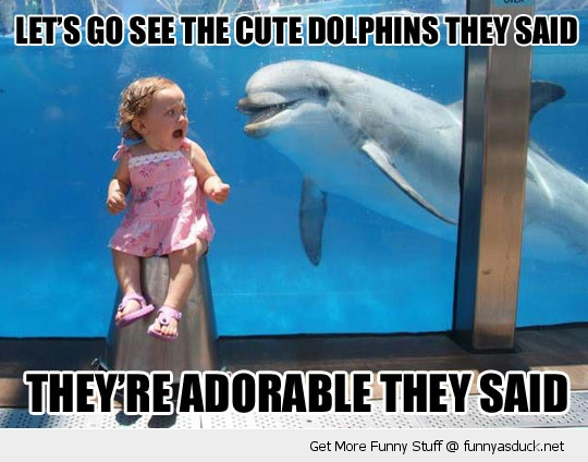 cute dolphins scared kid girl aquarium funny pics pictures pic picture image photo images photos lol