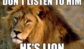 don't listen lion animal funny pics pictures pic picture image photo images photos lol