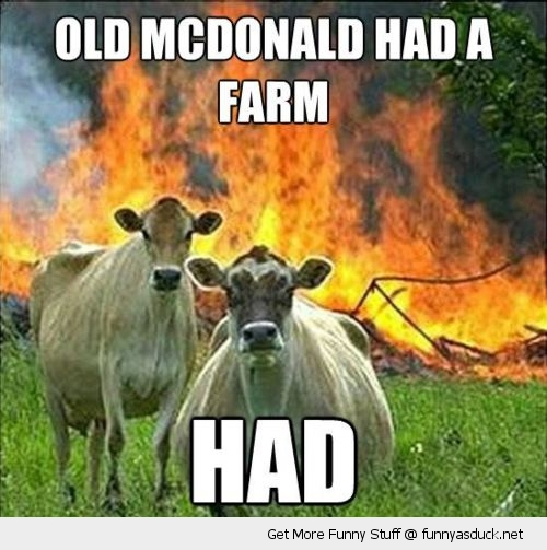 evil cows old mcdonald animal funny pics pictures pic picture image photo images photos lol