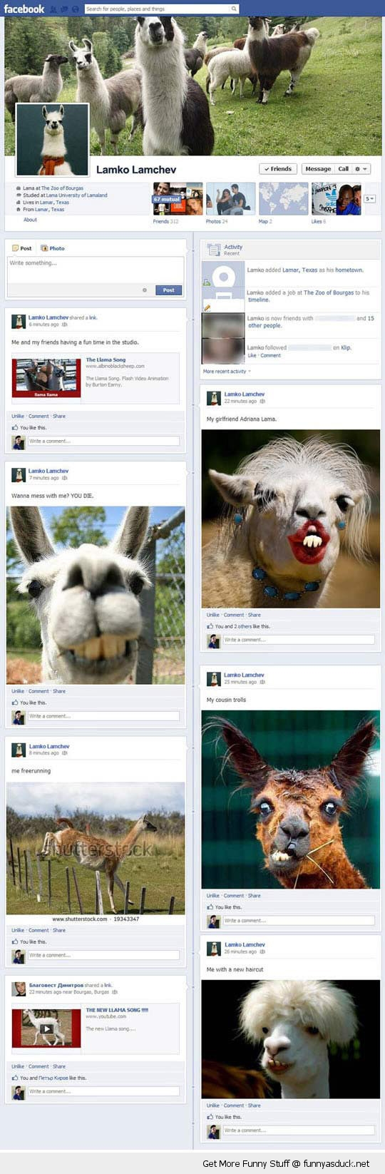 epic facebook frape llamas profile status funny pics pictures pic picture image photo images photos lol