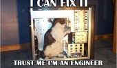 can fix it engineer cat computer pc animal funny pics pictures pic picture image photo images photos lol