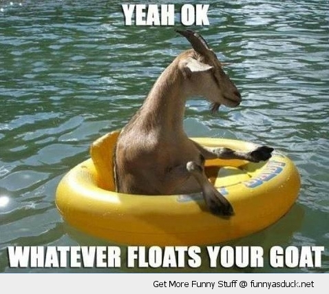 whatever floats your goat animal water ring funny pics pictures pic picture image photo images photos lol