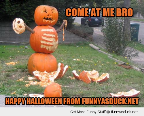 pumpkin come at me bro Halloween angry funny pics pictures pic picture image photo images photos lol