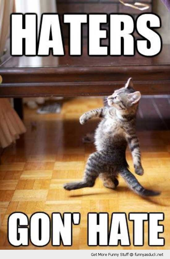 haters gonna hate cat lolcat animal funny pics pictures pic picture image photo images photos lol