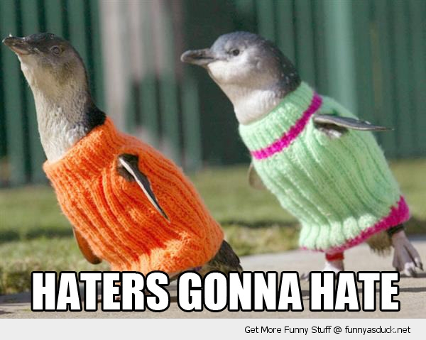 haters gonna hate penguins animals funny pics pictures pic picture image photo images photos lol