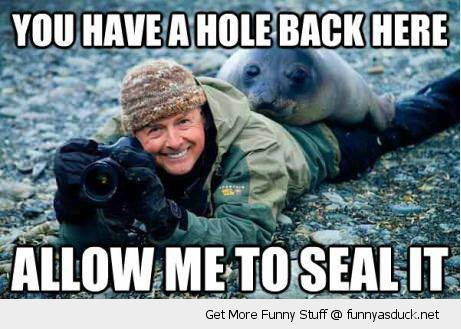 allow me to seal it animal photographer funny pics pictures pic picture image photo images photos lol