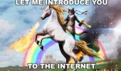 introduce you cat unicorn internet rainbow funny pics pictures pic picture image photo images photos lol