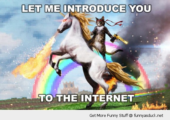 Images diverses - Page 2 Funny-introduce-you-internet-horse-unicorn-cat-pics