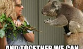 join me galaxy koala bear animal tree funny pics pictures pic picture image photo images photos lol