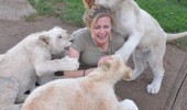lion cubs biting woman attacking fun they said funny pics pictures pic picture image photo images photos lol
