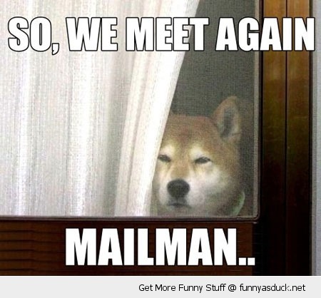 mailman meet again dog animal funny pics pictures pic picture image photo images photos lol
