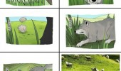 misunderstood wolf unting sheep leapfrog comic funny pics pictures pic picture image photo images photos lol