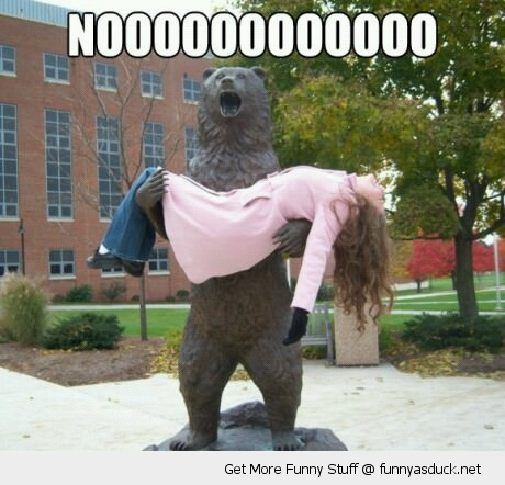 no bear statue dead girl college funny pics pictures pic picture image photo images photos lol