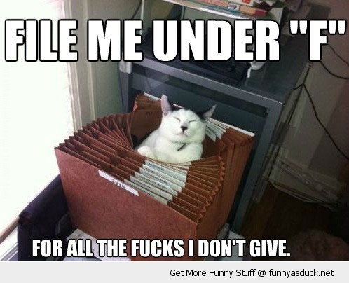 file me under f cat cabinet fuck lolcat funny pics pictures pic picture image photo images photos lol