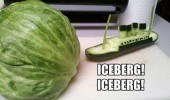 ice berg lettuce titanic boat funny pics pictures pic picture image photo images photos lol