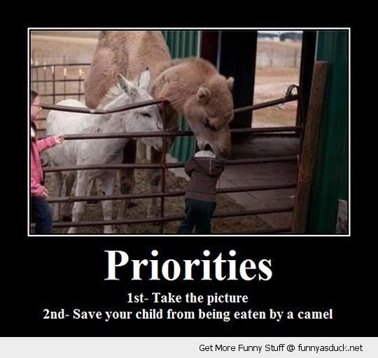 priorities camel eating kid baby boy animal funny pics pictures pic picture image photo images photos lol