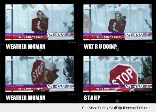weather woman reporter stop sign stahp woman funny pics pictures pic picture image photo images photos lol