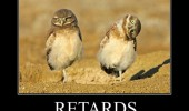 retards birds animal friend got one funny pics pictures pic picture image photo images photos lol