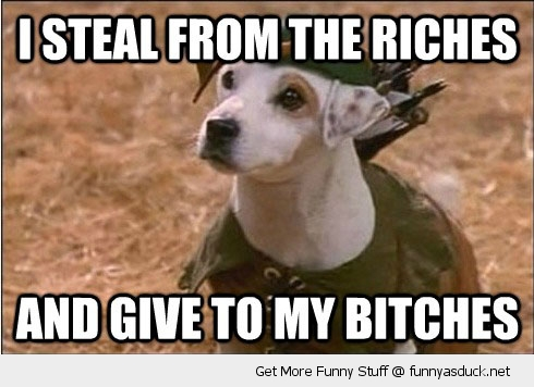 steal riches bitches robin hood dog animal funny pics pictures pic picture image photo images photos lol