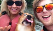 say cheese dog animal silly face tongue funny pics pictures pic picture image photo images photos lol